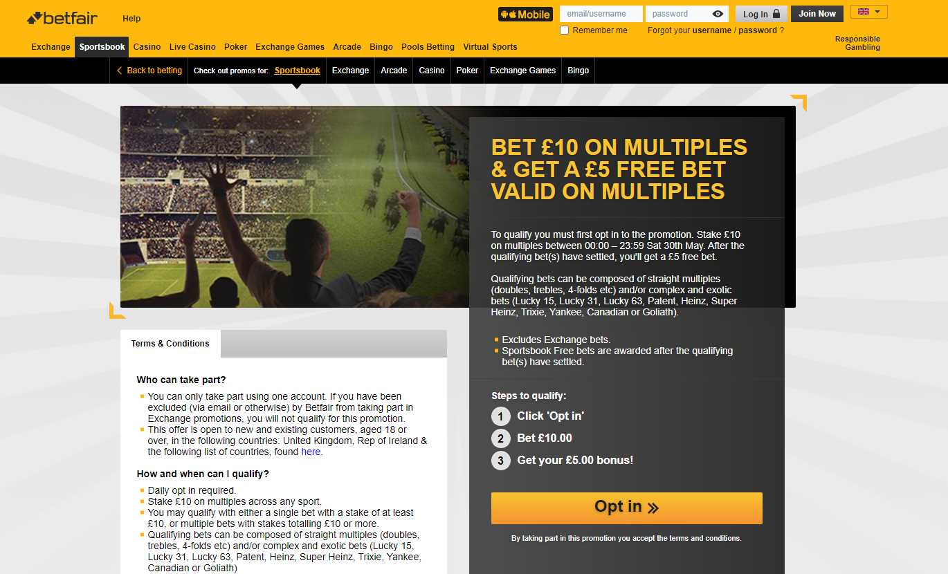 Placing a Bet With Betfair Exchange: Steps